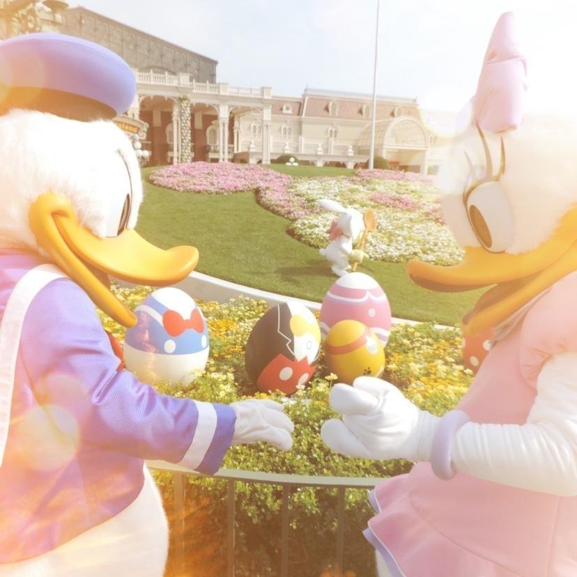 ドナルド・デイジーカップルが可愛すぎ♡ドナデジテーマウェディング*